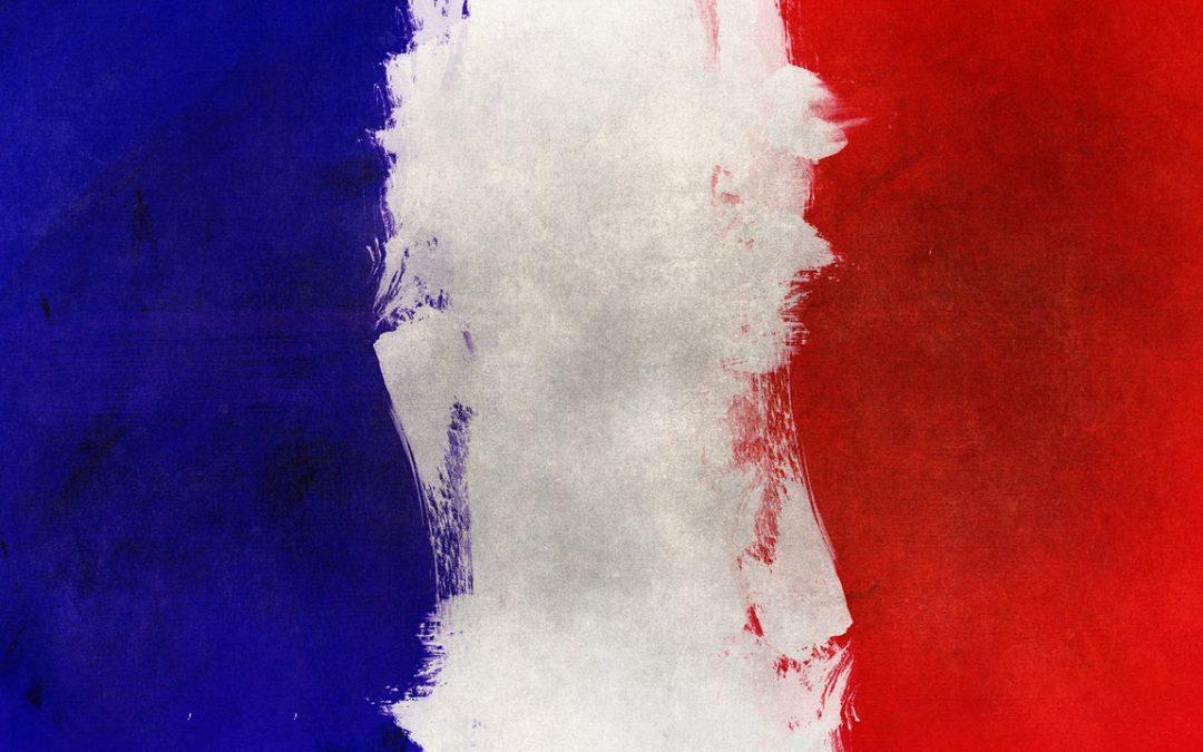 Aujourd'Hui Google Agit Contre Buzzea – Le Réseau de Lien Français