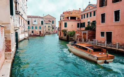 SEO News From Orchid Box Italian Office